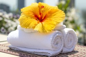 towel 2608095 1280 1 1 300x200 - towel-2608095_1280 (1)